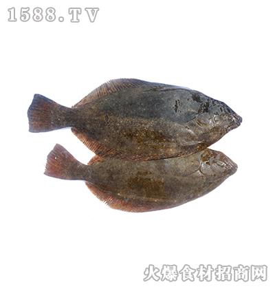 正润食品牙鲆鱼