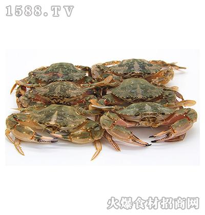正润食品花盖蟹