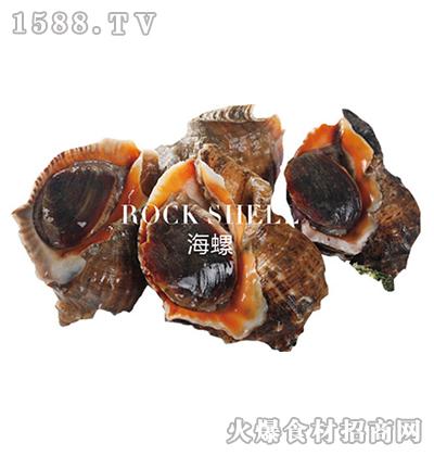 正润食品海螺