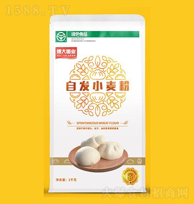 博大面业 自发小麦粉 1kg