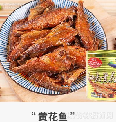 新域王 黄花鱼罐头