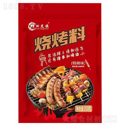 回龙镇-烧烤料特辣味-250克