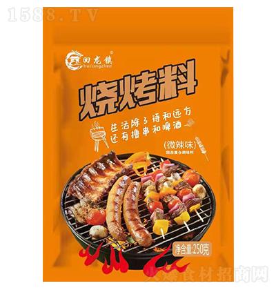 回龙镇-烧烤料微辣味-250克