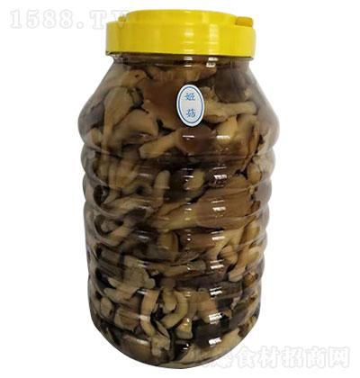 蘑尔 姬菇
