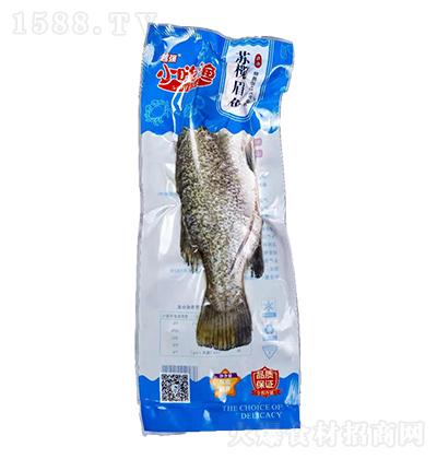 小嗨渔 苏榄眉鱼
