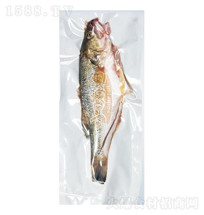 小嗨渔 加州鲈