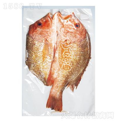 小嗨渔 海红斑