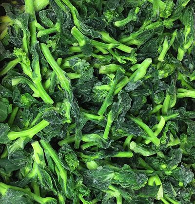 绿海 油菜花