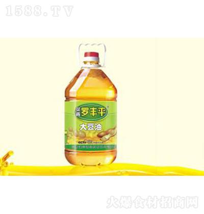 菜香罗丰平 一级大豆油