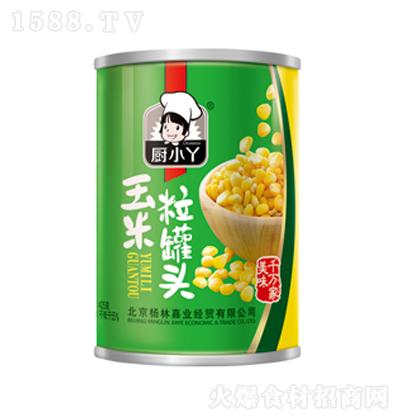 厨小丫 玉米粒罐头