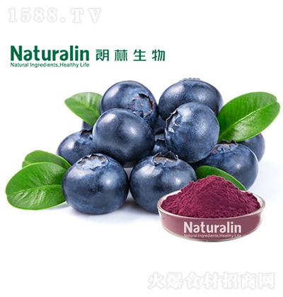 朗林生物 蓝莓粉