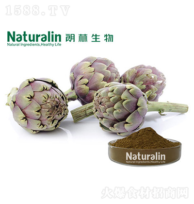 朗林生物 朝鲜蓟粉
