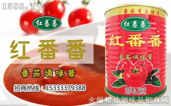 红番番番茄调味酱,增色!添酸!助鲜!郁香!