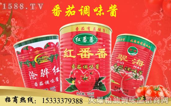 红番番番茄调味酱,浓浓番茄,悦享美味!