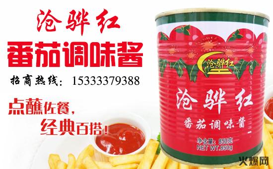 翠海番茄调味酱,果香浓郁,爱不释口!