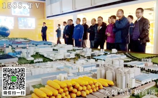 泰国万浦电力有限公司一行到西王集团调研