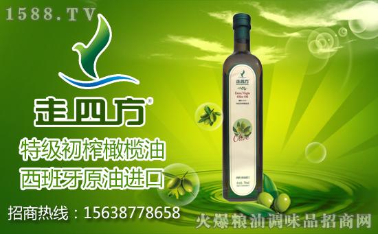 """走四方特级初榨橄榄油,西班牙原油进口!""""走四方""""送健康!"""