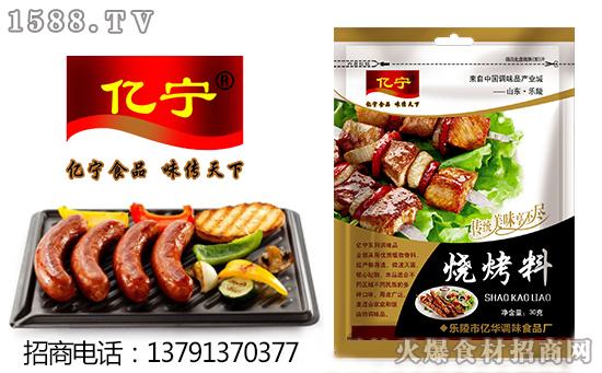 亿宁烧烤料,传统美味享不停!!!