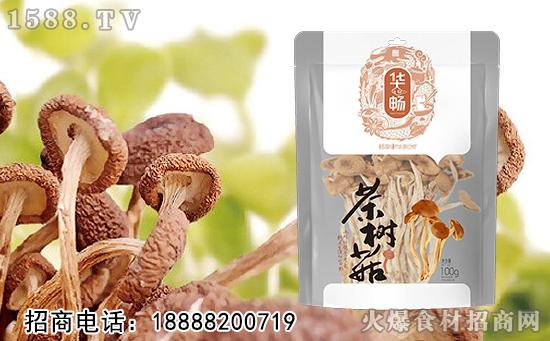 华畅茶树菇,新鲜采摘,肉质肥厚,爽滑更具弹性!