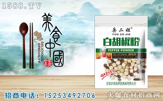 岳二姐白胡椒粉调味料,具有特有的芳香味道,是百姓欢迎的调味品!