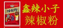 漯河市鑫辣小子调味品有限公司