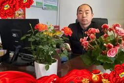 【大唐宜品】刘经理祝大家新春快乐,祥瑞新年!
