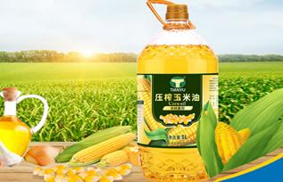 天玉压榨玉米油