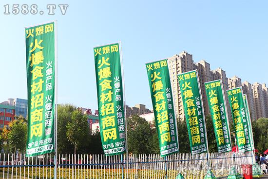 火爆网强势助力2020山东乐陵枣博会!