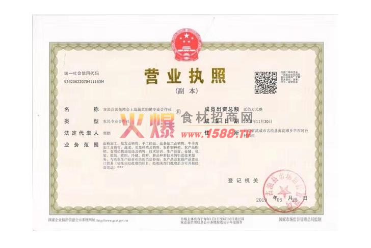 营业执照-古浪县黄花滩金土地蔬菜购销专业合作社